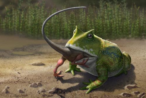 Древние лягушки питались динозаврами
