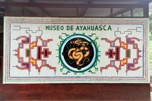 Лягушки в логотипах